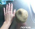 手と比べる!